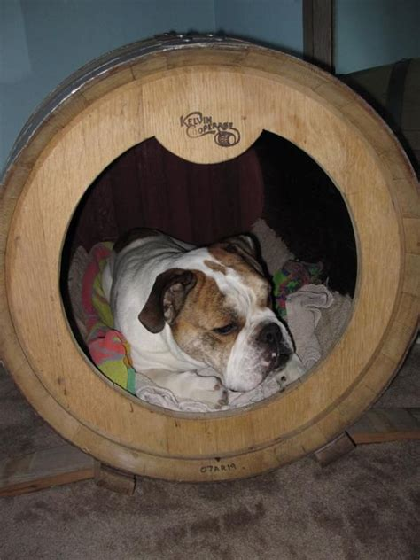 whiskey barrel dog house dog house from wine barrel too cute my fav things