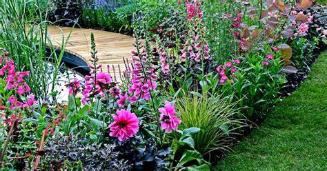 Vaste Planten Border Beplantingsplan by Beplantingsplan Voor Een Smalle Border Handige Tips