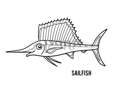 sailfish coloring pages sailfish coloring pages