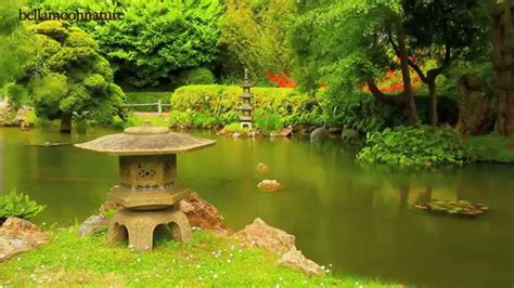 japanese tea garden golden gate park san francisco