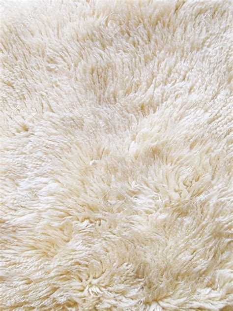 Discount Wool Rugs - 15 best ideas of discount wool area rugs