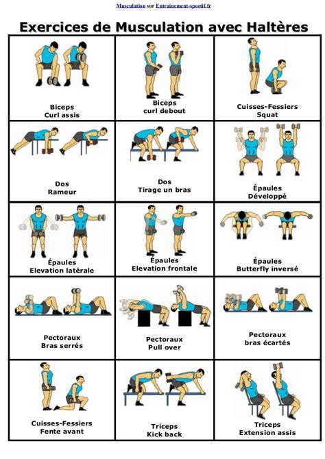 Exercice Musculation Avec Banc by Exercices De Musculation Avec Halteres