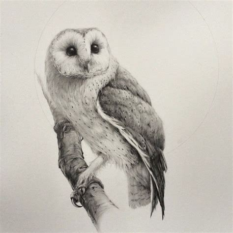realistic owl tattoo design 85 best barn owl tattoos designs with meanings