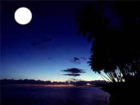 moonlight usa