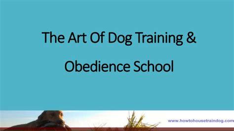 obedience school the of obedience school