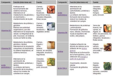 Lu Hid Leopard alimentaci 243 n dietas y salud informaci 243 n y asesoramiento