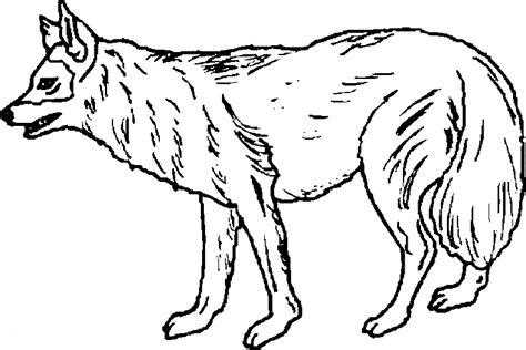 imagenes de animales terrestres para colorear dibujos de animales terrestres para colorear imagui