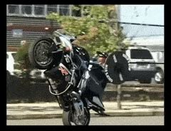 bench press wheelie stuntlife gifs search find make share gfycat gifs
