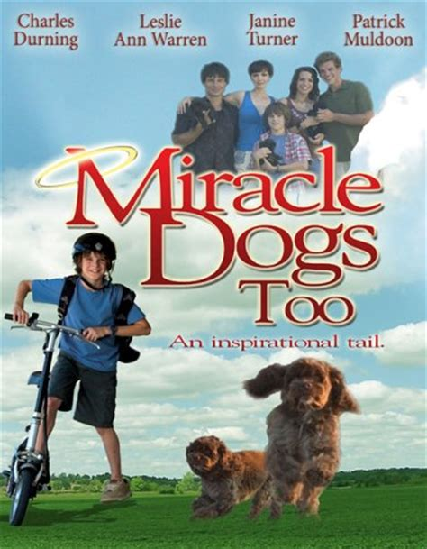 Miracle Dogs Free Dogs On