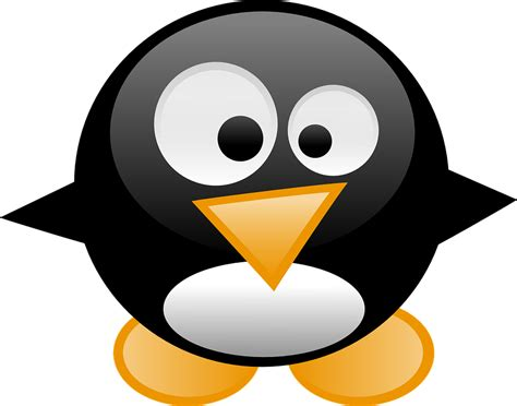 transparent things the penguin penguin tux animal 183 free vector graphic on pixabay