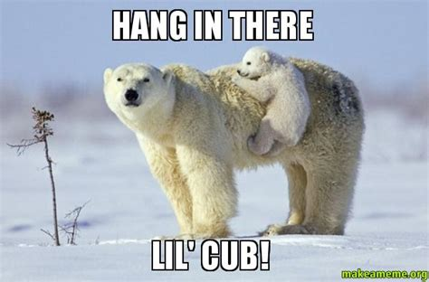 Hang In There Meme - image gallery hang in there meme