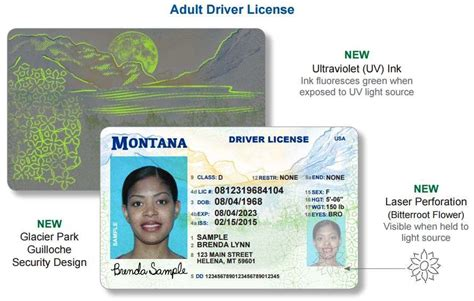 department of motor vehicles kalispell montana montana unveils new driver license and identification