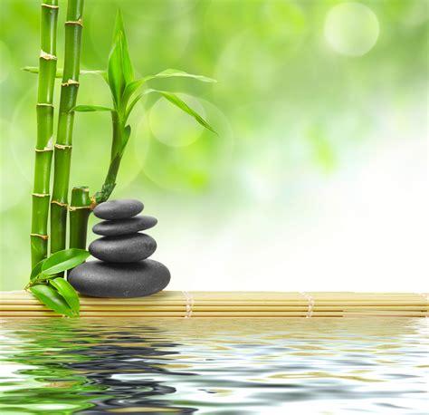 imagenes zen bambu relaxation techniques for the anxious dental patient