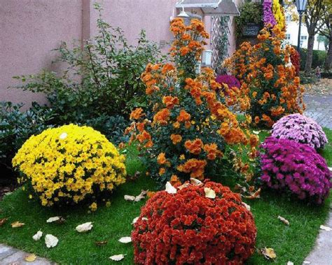 fall landscaping tips colorful home decorating with fall flowers inspiring fall