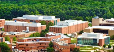 Wright State Mba Admissions by 30 Most Affordable Master S Mba In Marketing 2018