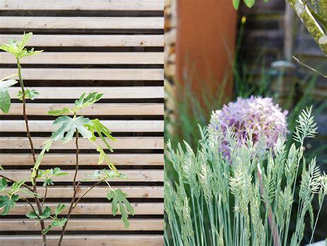 garten und ideen straub sichtschutz im garten hecke oder zaun was passt besser