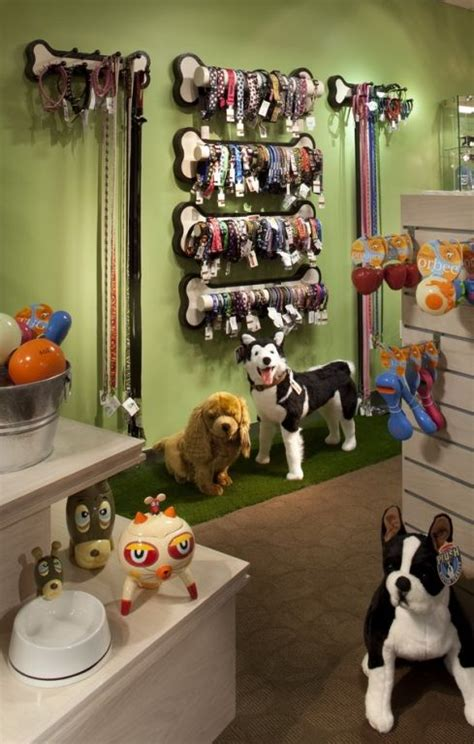 puppy store denver 74 best pet store lighting and design images on pet store pet boutique