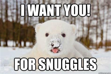 Snuggle Bear Meme - snuggle bear meme memes