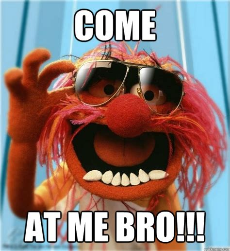 Come At Me Bro Meme - come at me bro advice animal quickmeme