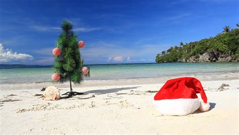 caribbean christmas stock footage video 4567496 shutterstock