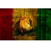 Lion Of Judah Rasta Jah Animals Cats Hd Wallpaper 1614688