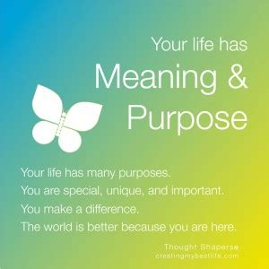 empower your a guide to your highest purpose books today s best lesson your has meaning purpose