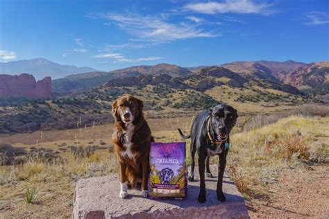 4health food review untamed by 4health 174 food product review follow your detour