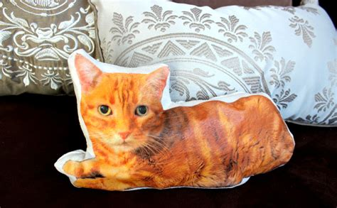 Cat On Pillow by Make Your Own Custom Cat Pillow With Cats