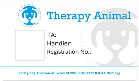 how to register your as a therapy how to register your as a therapy service certifications