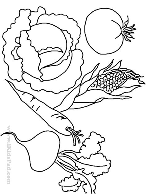 vegetables coloring pages pdf free printable fruits and food coloring book for kids