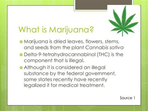 Herb Pot by Marijuana Power Point Presentation Dion