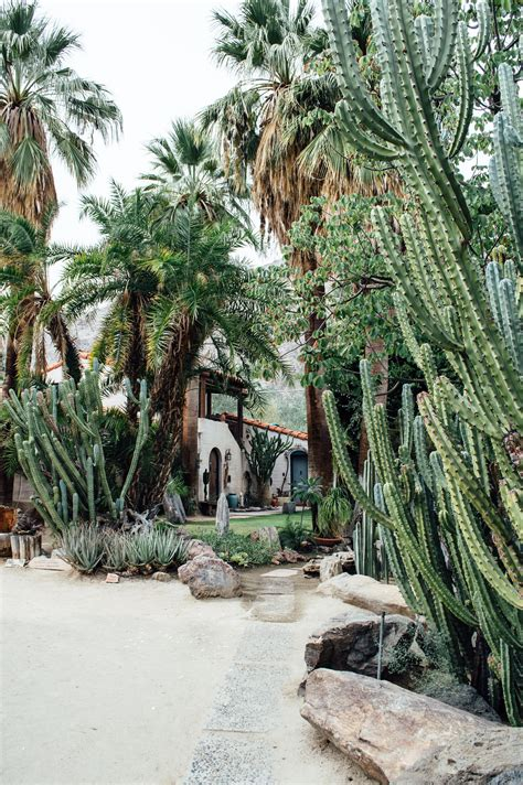palm springs botanical garden moorten botanical garden palm springs california weekend magazine california weekend guide