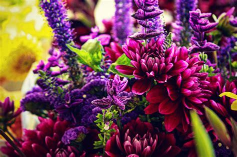 vibrant color vibrant colors kolby skidmore