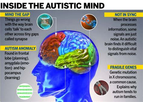the politics of autism navigating the contested spectrum books autism is rising alarmingly in india how far is the new