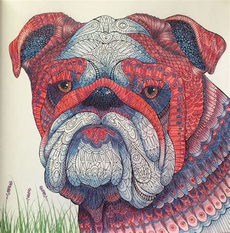 The Colorful Antistress Coloring Book bulldog the menagerie colouring book the
