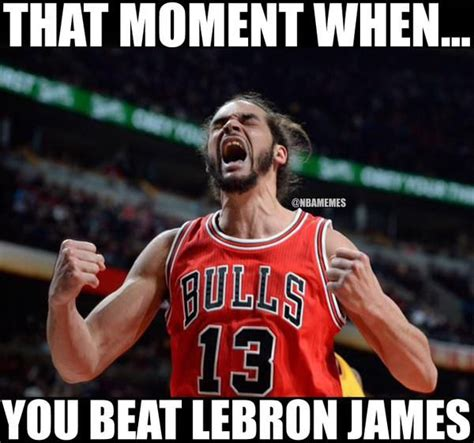 Chicago Bulls Memes - 17 best images about basketball memes on pinterest