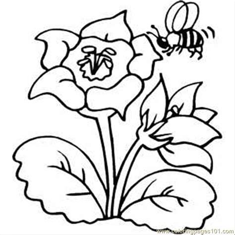 coloring pages of flowers and bees free coloring pages of flowers details