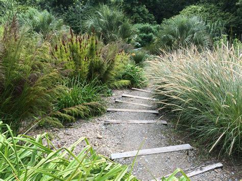 garten gräser schneiden pflanzen f 252 rs kiesbeet 15 tipps f 252 r bepflanzung und pflege