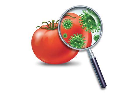 alimentare sinonimo perigo alimentar e risco alimentar s 227 o 243 nimos o sabe