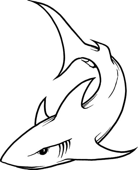 drawing of a drawings of sharks how to draw a hammerhead shark step by step drawing