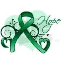liver cancer ribbon color liver cancer on liver cancer ribbons and