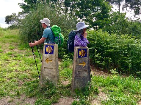 Camino De by Camino De Santiago Zigzagging With Bill And