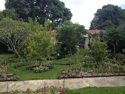 u vegetables florida vegetable garden tyranny in florida radio vice