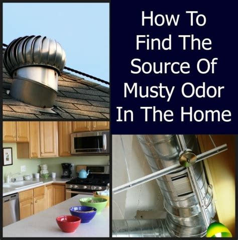 musty bedroom smell musty odor in a home home ec 101