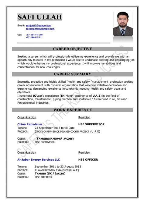 Health And Safety Officer Sle Resume by Resume Sles Gallery Photos The Officer Sle College Application Essays Tips For