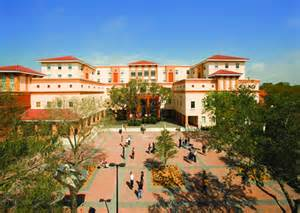 Image result for ringling college of art and design