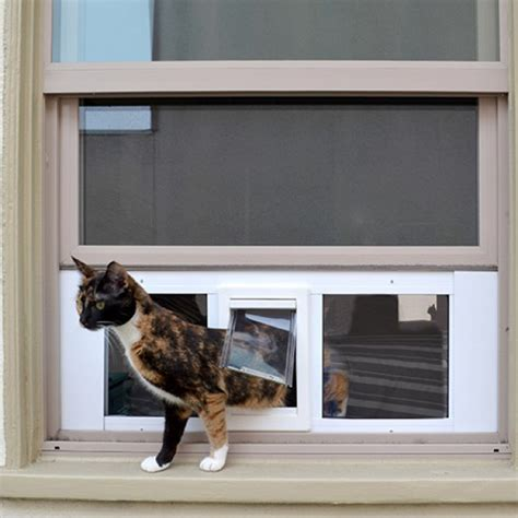 Putting Cat Flap In Glass Door Ideal Fast Sash Window Pet Door Window Cat Doors