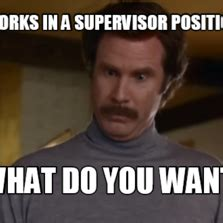 Supervisor Meme - works in a supervisor position quot what do you want quot memes com