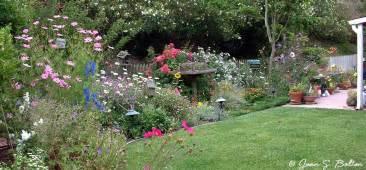 White Flowered Perennials - santa barbara garden design portfolio cottage garden