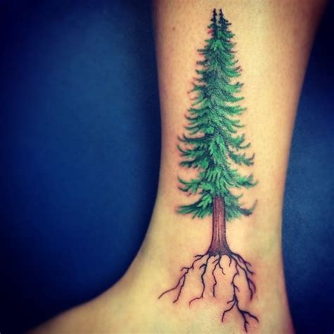 cedar tree tattoo tree tattoos designs and meanings flowertattooideas